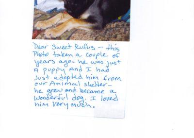 Rufus Photo 1
