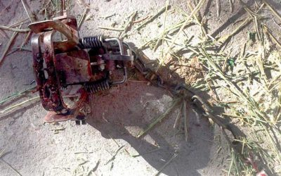 Editorial: NM trapping supporters should look at this photo