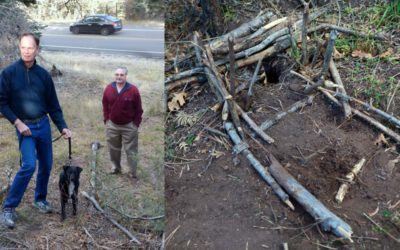 Owner rushes to save dog caught in jaw trap near popular trail