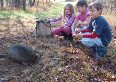 kids-watch-trapped-raccoon-causes-com-www-causes-comstoptrapping