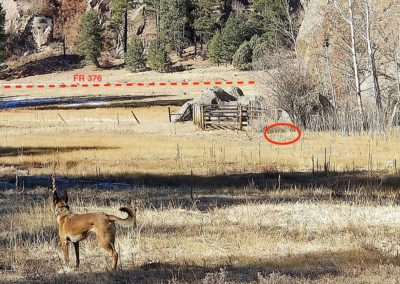 Trap Incident Report: Jemez National Recreation Area – November 26, 2020