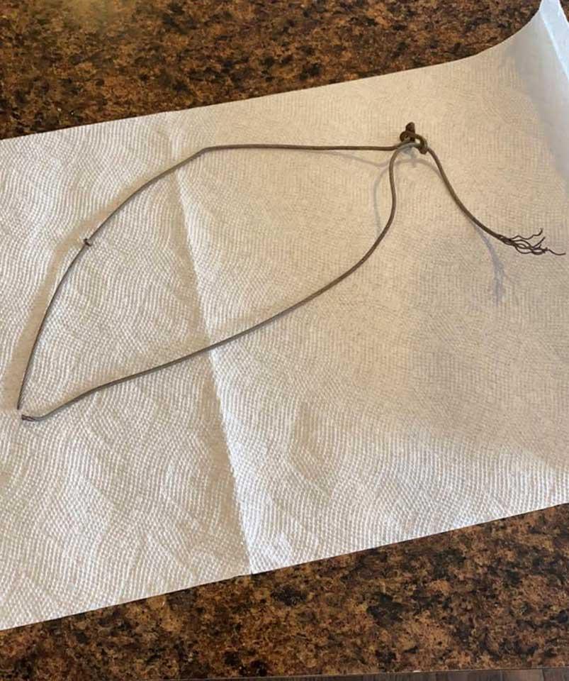 Strangulation cable snare - Dixon, NM January 2021